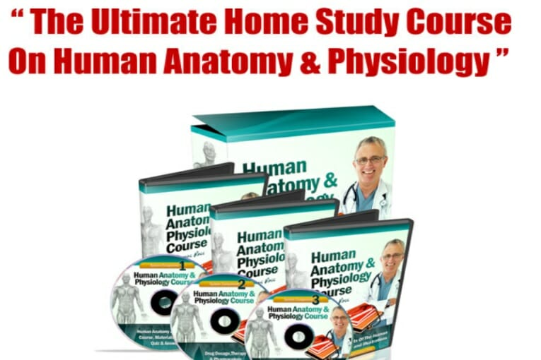 Human Anatomy And Physiology Pdf Textbook Study Course