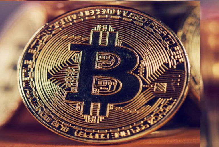 bitcoin profit download